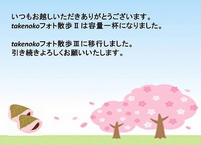 新ブログおしらせ2.jpg